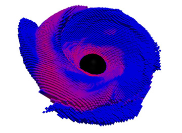 3D structure of the remnant accretion disk of a black-hole